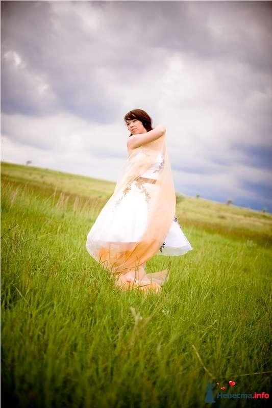 Танцы на траве фото Е.Курин - фото 113268 Alliene