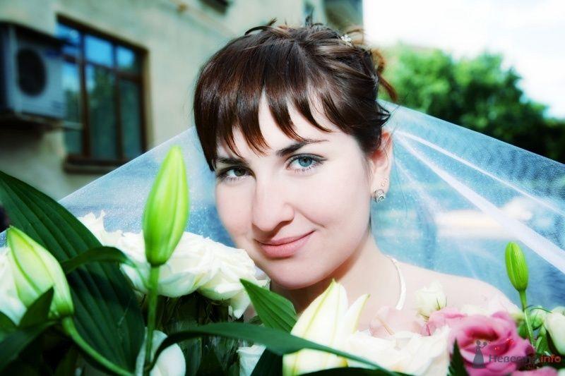 Фото 33777 в коллекции Молоды и счастливы - Свадебный фотограф Виктория Ромащенко