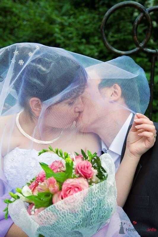 Фото 33934 в коллекции Молоды и счастливы - Свадебный фотограф Виктория Ромащенко