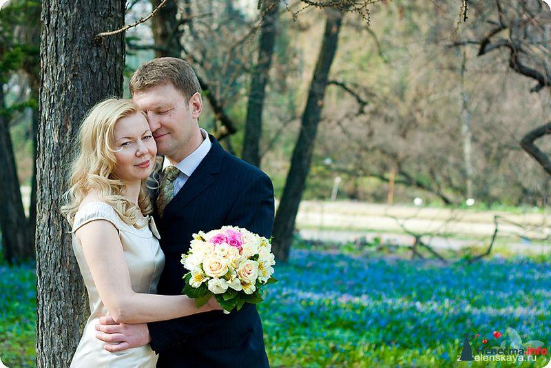 Фото 90474 в коллекции Свадьбы - Фотограф Оксана Зазеленская