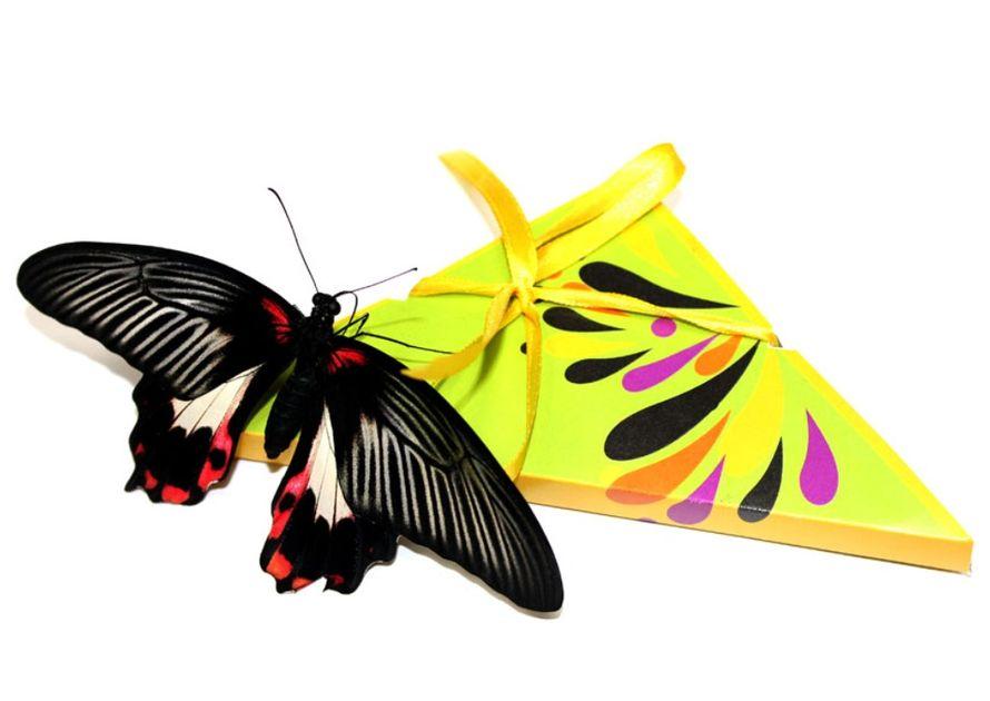 Днем, открытка живые бабочки