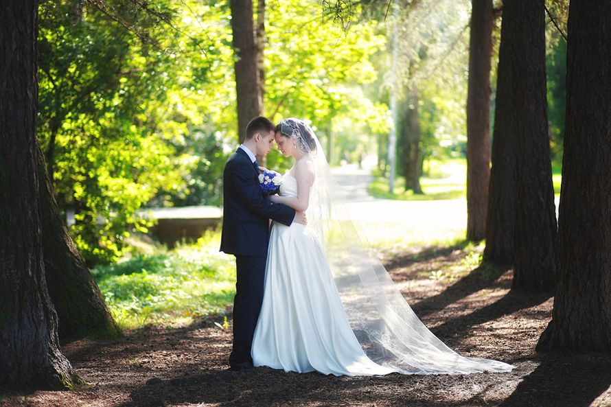 Фото 546782 в коллекции Мои фотографии - Свадебный фотограф Гачок Ксения