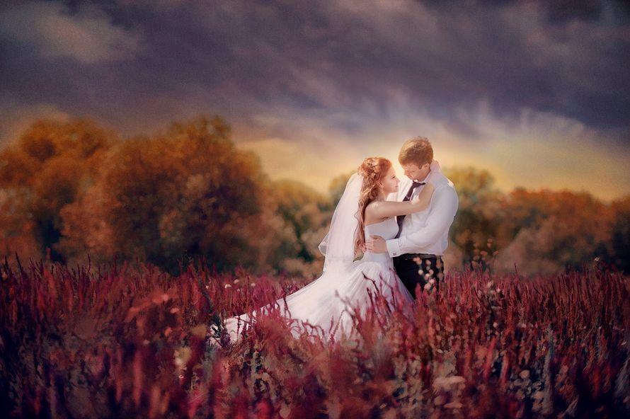 Фото 605507 в коллекции Свадьбы - Фотостудия Батурина Дениса