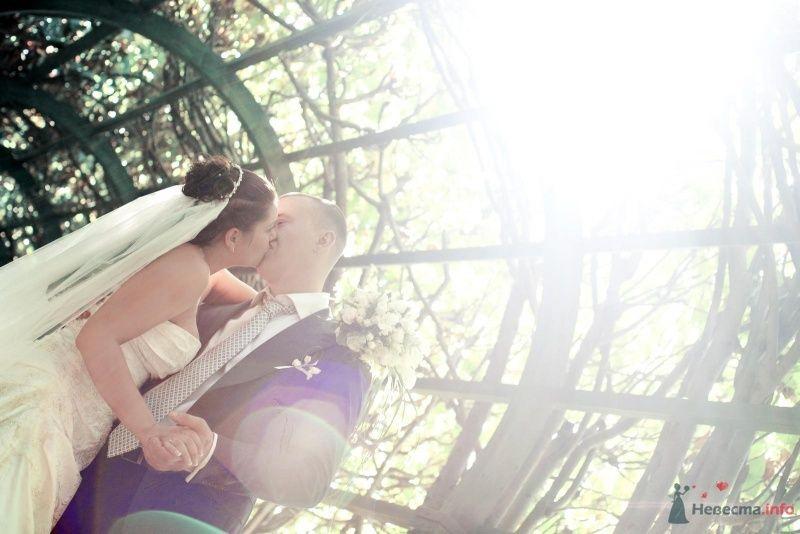 прекрасные моменты - фото 62986 Юлия.Я