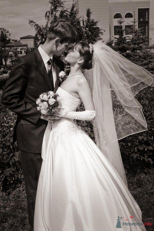 Фото 41482 в коллекции наша веселая свадьба - Katerina22