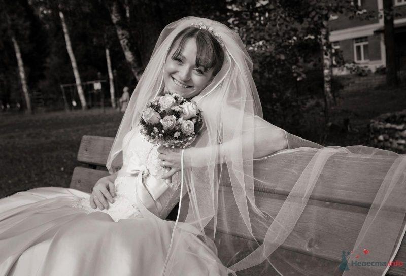 Фото 42453 в коллекции наша веселая свадьба - Katerina22
