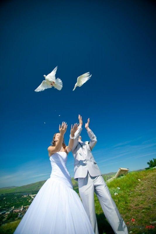 Фото 59399 в коллекции Наша прекрасная свадьба - Nata_Abakan