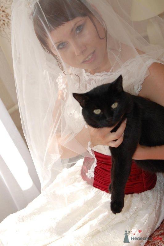 Фото 42827 в коллекции Моя свадьба - Афалина