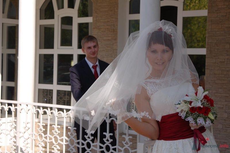 Фото 42834 в коллекции Моя свадьба - Афалина