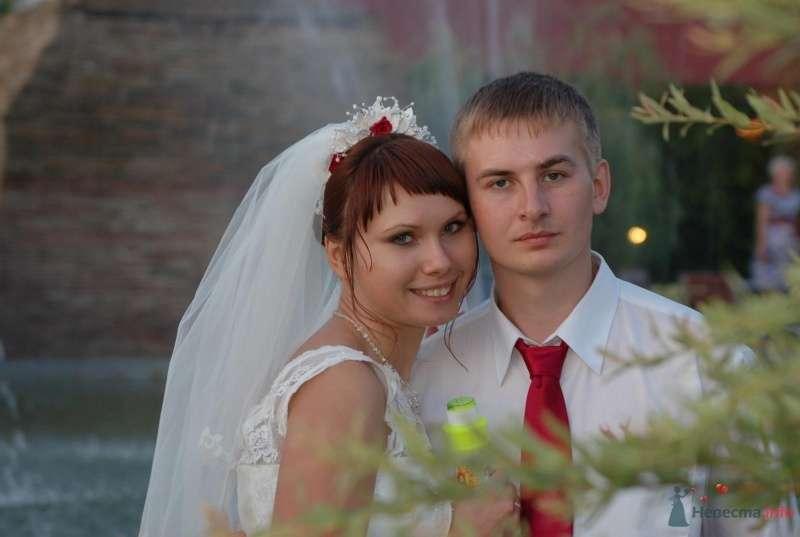 Фото 42847 в коллекции Моя свадьба - Афалина