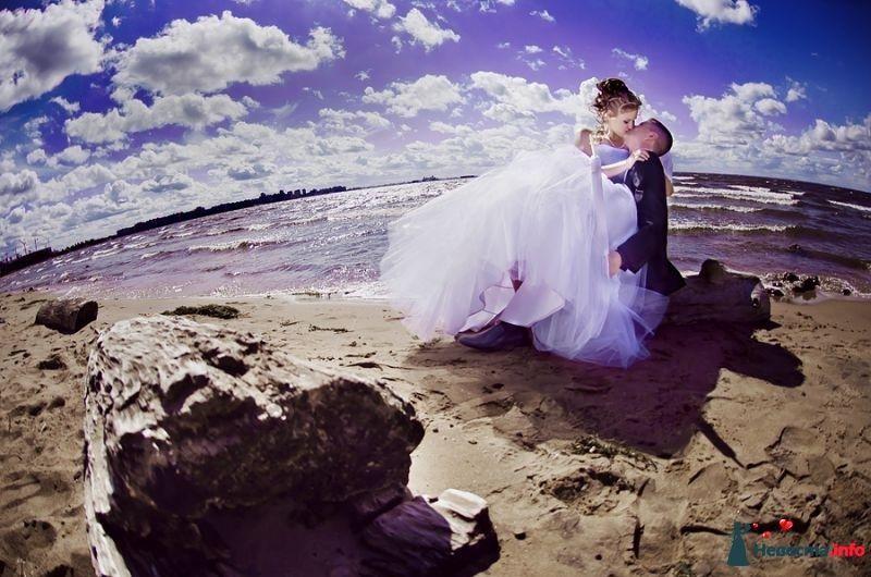 Фото 378294 в коллекции Мои фотографии - Свадебный фотограф Сермяжко Дмитрий