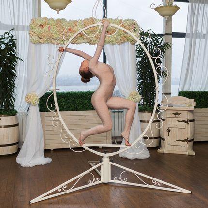 """""""Камея"""" - гимнастка в партерном кольце"""