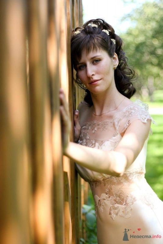 Фото 46710 в коллекции Мои фотографии - hryuska