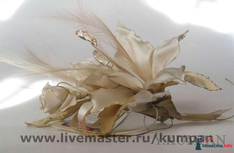 Фото 88238 в коллекции Мои фотографии - hryuska