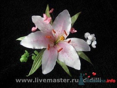 Фото 88239 в коллекции Мои фотографии - hryuska
