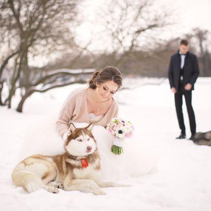 Свадебная фотосъемка - 6 часов