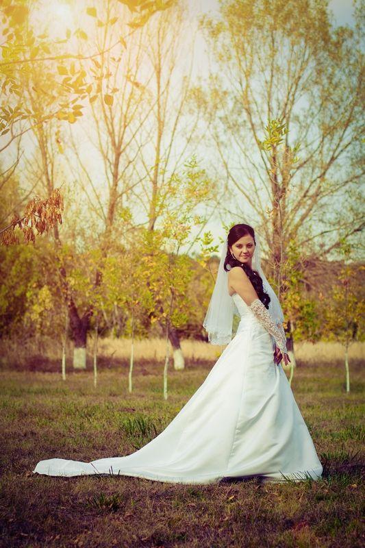 Фото 599588 в коллекции Мои фотографии - Свадебный фотограф Рита Селезнева