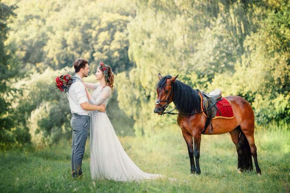 Лошадка! Было бы здорово ее в нашу компанию - фото 9136148 MashaMadeInRussia