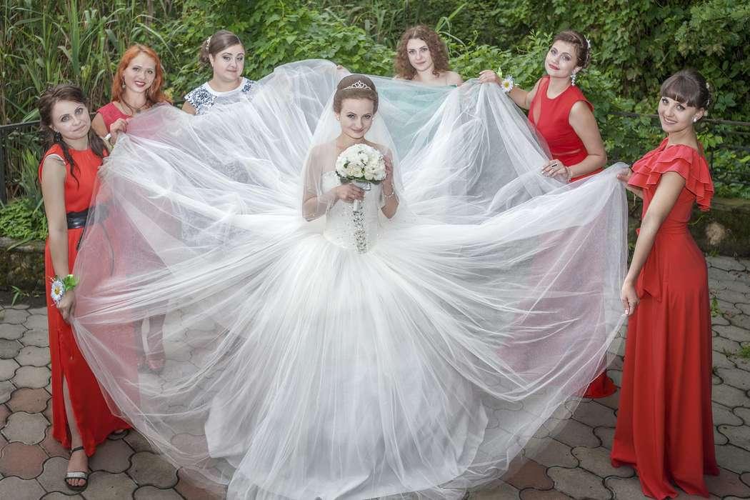 Ромашковая свадьба Димы и Риты - фото 8579326 V and P фотостудия