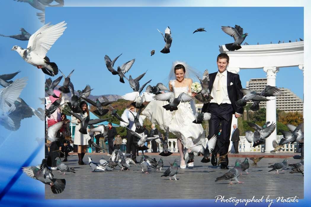 Фото 6608522 в коллекции Тамада Сергей Затока - Ведущий Сергей Затока
