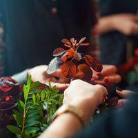 "Flowers&Decor - ""Зеленая Кухня""  Photo - Михаил Петрушин"