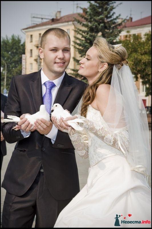 Фото 391547 в коллекции 11 июля 2014 Андрей и Люба - Свадебный фотограф Белуга Михаил