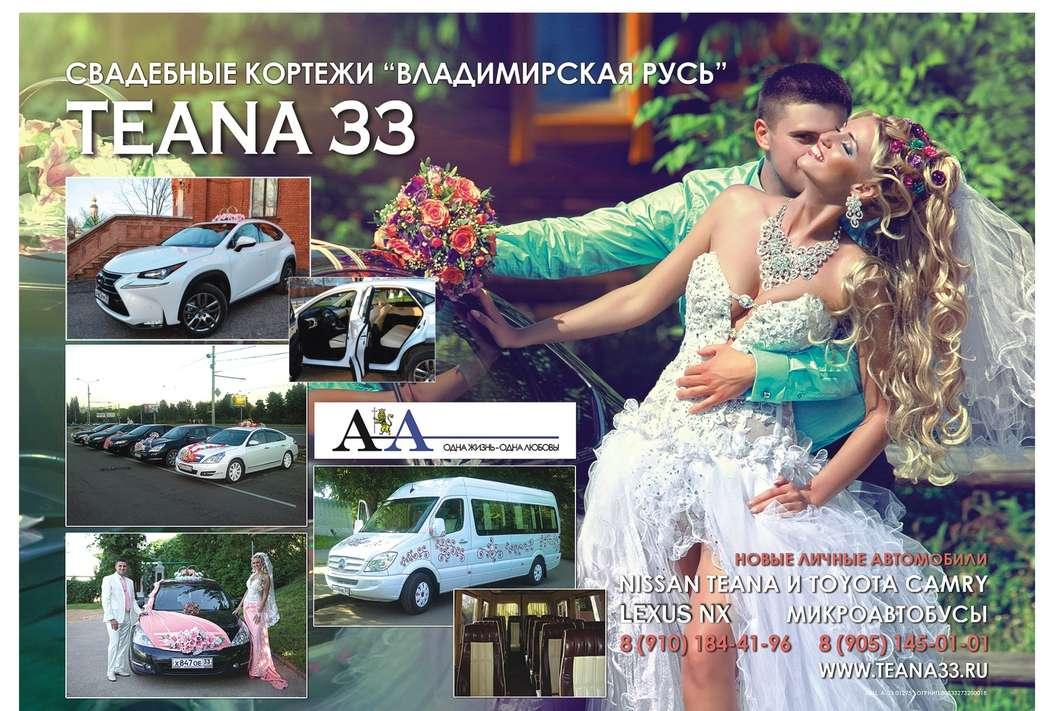"""Фото 13761026 в коллекции Портфолио - Компания """"Teana 33"""" - свадебные кортежи"""