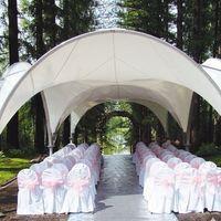 Арочный шатёр, стулья, украшенные бантами, дорожка. Арка из живых цветов.