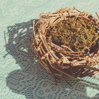 Гнездо для колец на свадьбе в стиле Кантри