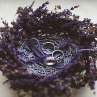 Лавандовое гнездо с кольцами на свадьбе Сергея и Натальи