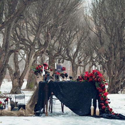 Фотосъёмка вашей свадьбы, книга и видео-клип в подарок
