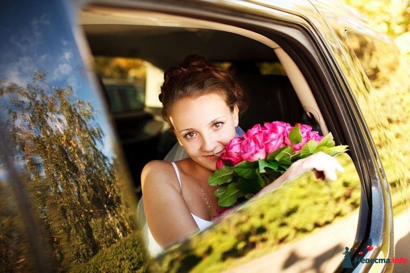 Фото 405580 в коллекции Свадебное. - Фотограф Андрей Завьялов