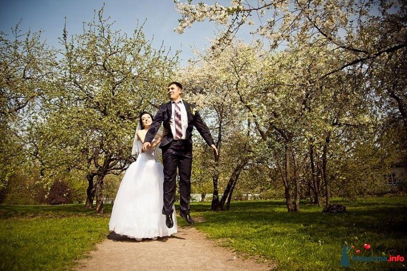 Фото 481951 в коллекции Свадебное. - Фотограф Андрей Завьялов