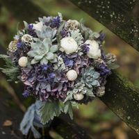 Зимний букет невесты с синей гортензией, ранункулусами, краспедией, скабиозой и суккулентами