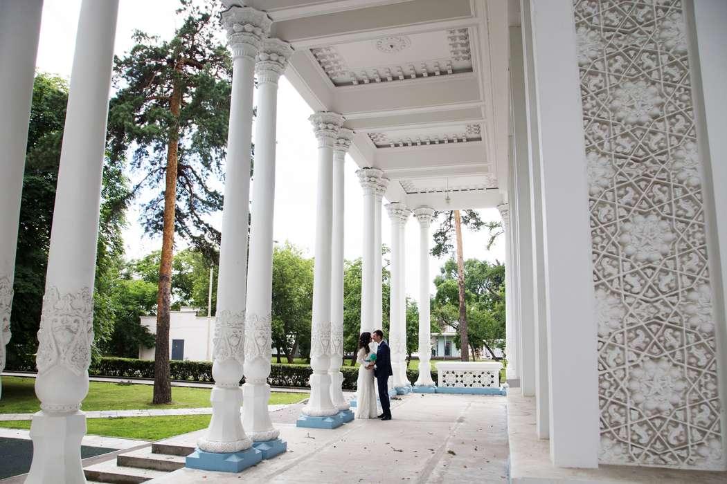 Секретные места для фотографий в санкт петербурге линии жизни