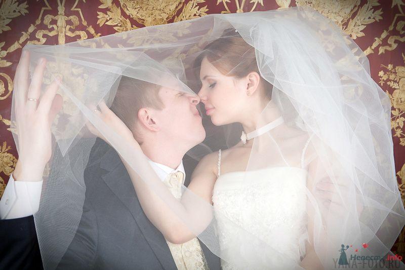 зимняя свадьба Киры и Дмитрия - фото 75797 Фотограф Яна Роджерс