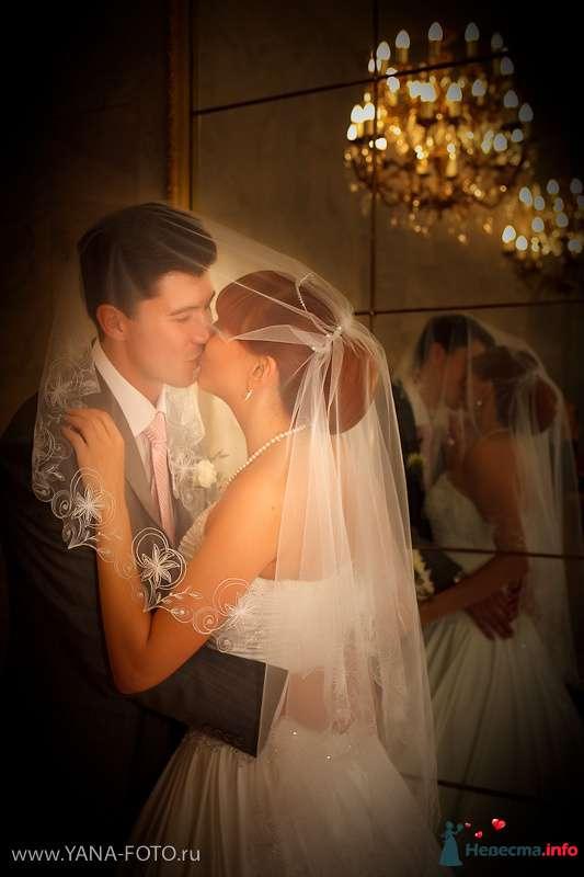 Фото 131905 в коллекции Свадьба Ольги и Рината - Фотограф Яна Роджерс