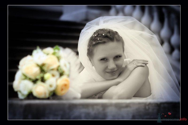 Фото 60213 в коллекции моя свадьба - vesna086