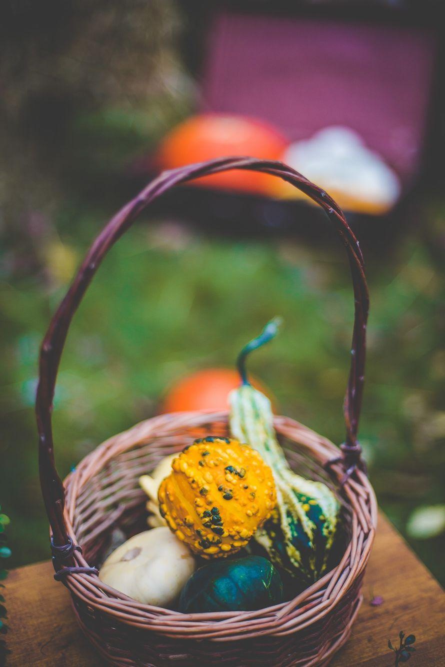 """Фото 8040882 в коллекции Осенняя фотозона - """"Важный день"""" - декор и флористика"""