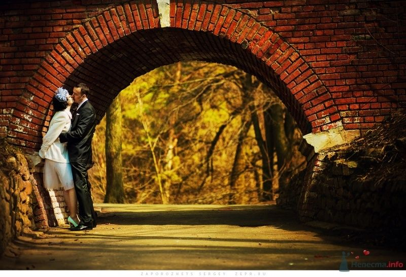 Жених и невеста, прислонившись друг к другу, стоят на фоне арки - фото 30890 Фотограф Запорожец Сергей