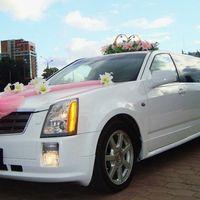 аренда лимузина на свадьбу. заказать лимузин