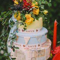 торт для путешествий :)