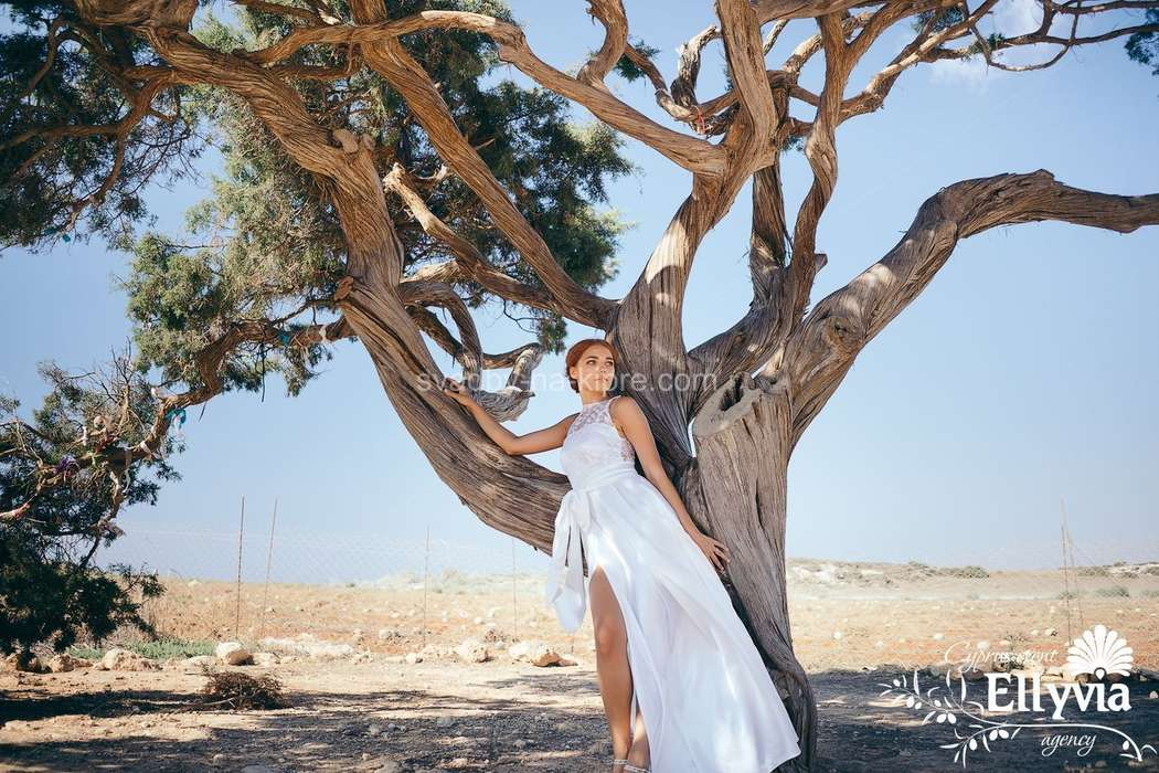 Фото 9011212 в коллекции Портфолио - Ellyvia - свадебное агентство на Кипре