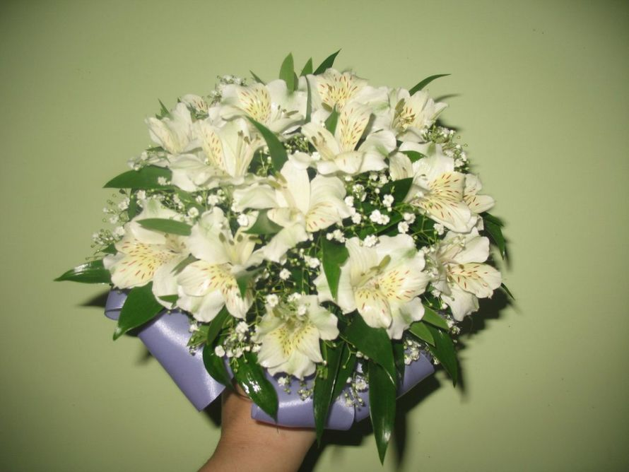 Альстромерия букет невесты фото, роз герберы