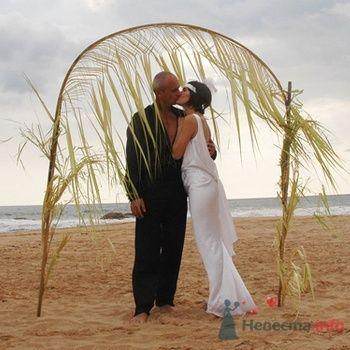 Фото 56543 в коллекции Мои фотографии - Невестушка