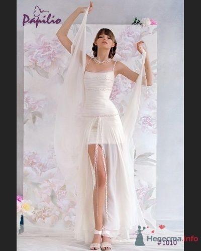 Фото 71313 в коллекции Мои фотографии - Невестушка