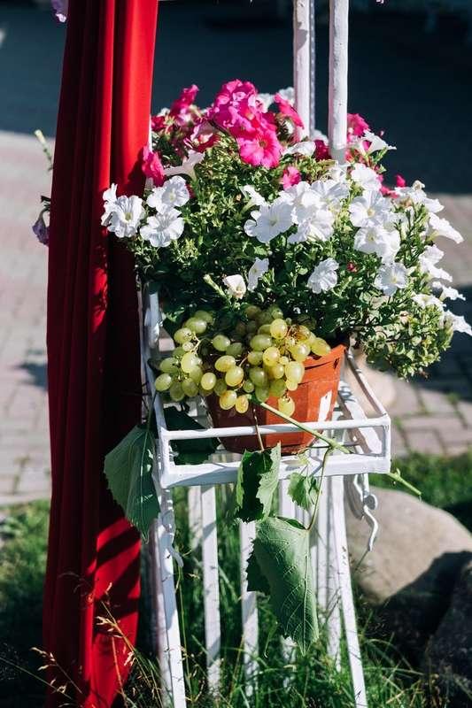 Фото 17272054 в коллекции Винная свадьба Ирины и Дмитрия - Студия декора Юлии Капраловой