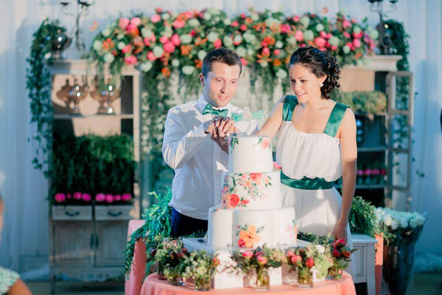 Фотографии молодожены режут свадебный торт