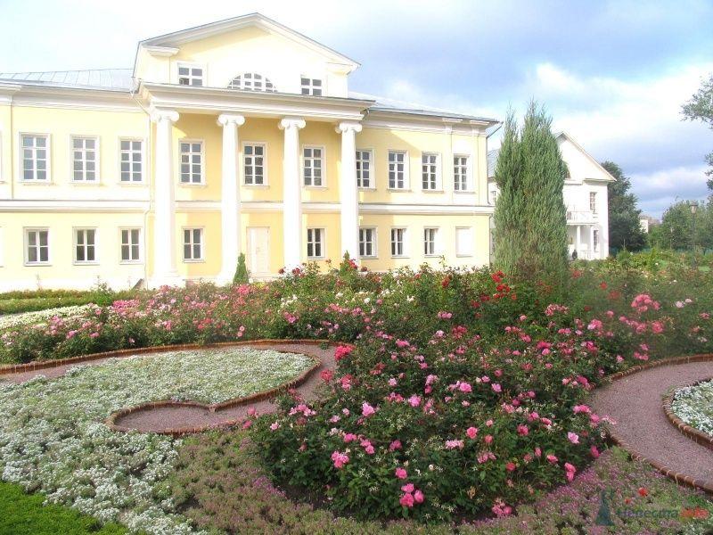 внутри двора ) - фото 36634 Нюшка Менделеева