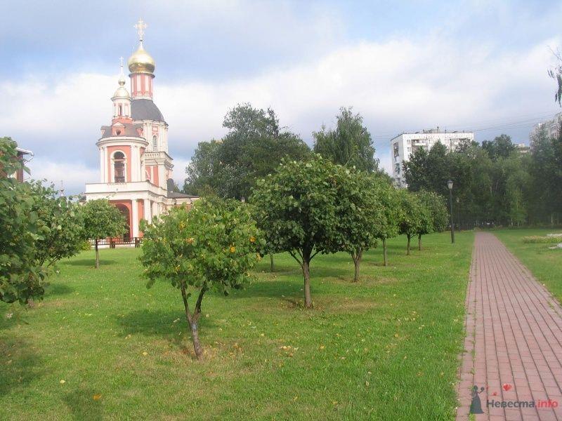 церковь - фото 36637 Нюшка Менделеева